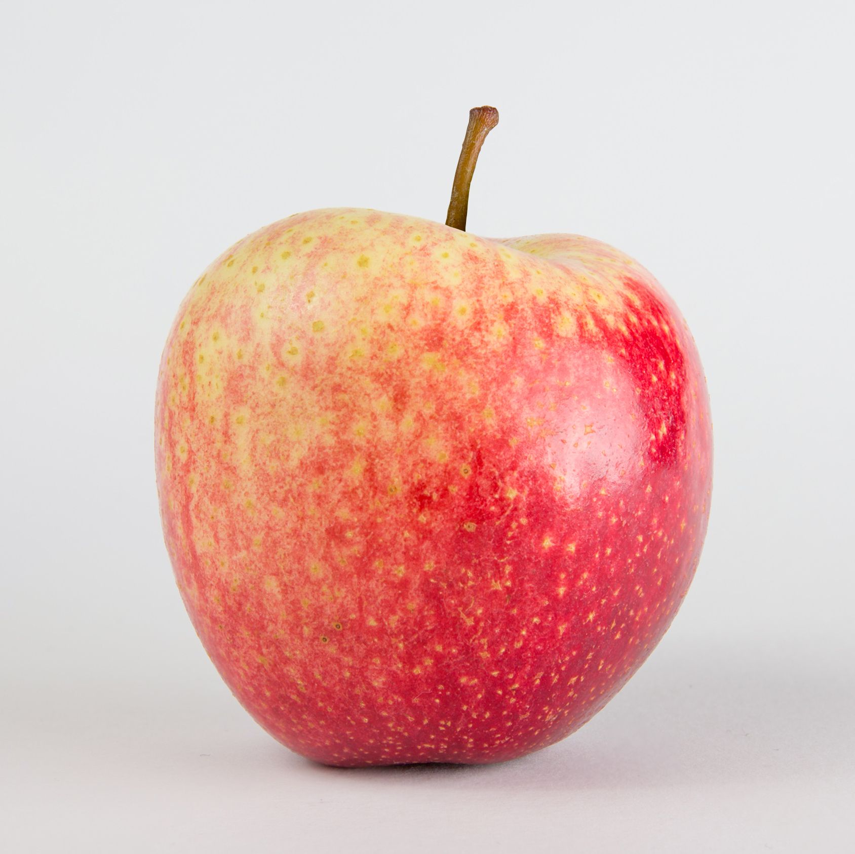 PurpleWhite , an exciting bi-coloured apple with a richly aromatic flavour