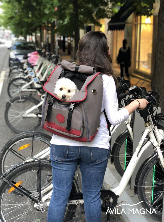 Bolsos y mochilas para viajar con tu perro o con tu gato