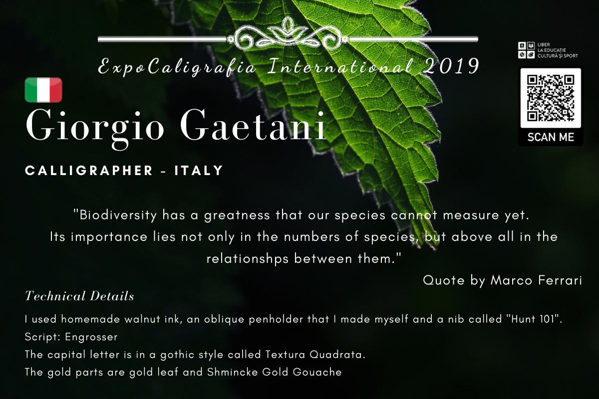 Giorgio Gaetani-1.png