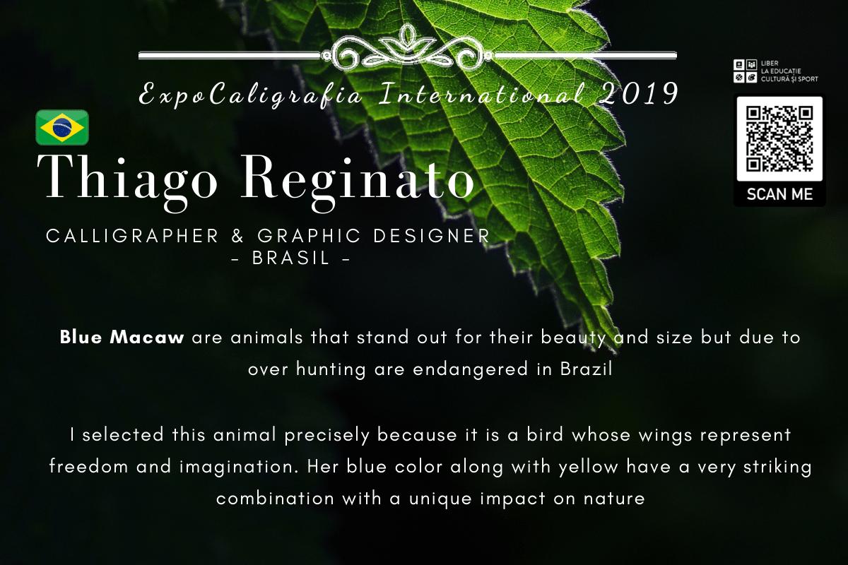 Thiago Reginato-1.png