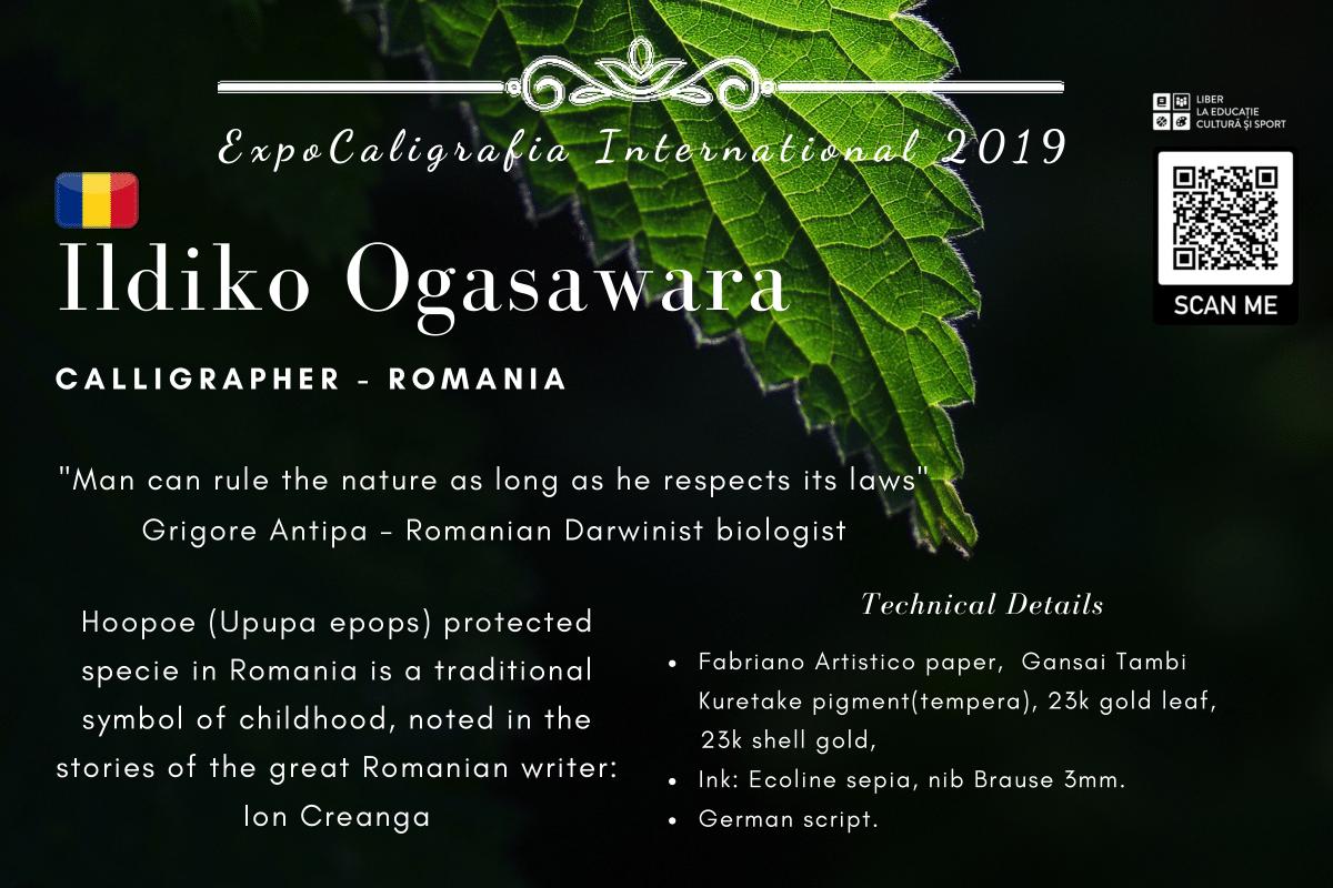 Ildiko Ogasawara (1)-1.png