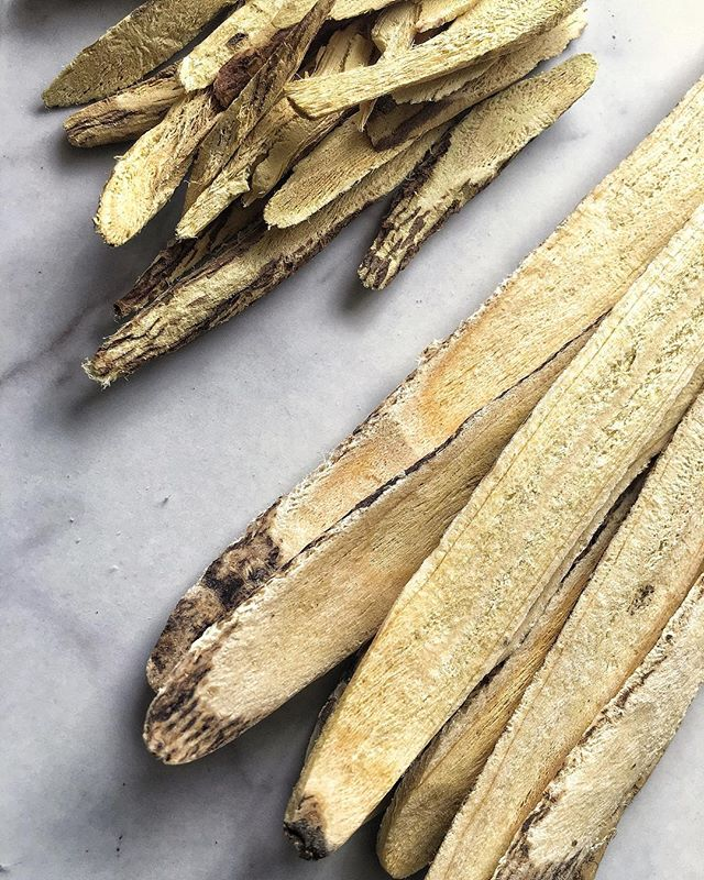 ROOT. ⠀⠀⠀⠀⠀⠀⠀⠀⠀ Chinese licorice root (Gancao/Glycyrrhiza uralensis) and Astragalus (Huang Qi/Astragali Radix) side by side comparison. ⠀⠀⠀⠀⠀⠀⠀⠀⠀ Aside from licorice's anti-inflammatory properties that make it so well known for fighting colds, the glabridin part of the licorice plant inhibits pigmentation, brightening and evening skin tone. For that reason we've infused it into our Illume and Radiate Remedy Oils. ⠀⠀⠀⠀⠀⠀⠀⠀⠀ A known adaptogen, Astragalus helps offset the effects of stress on your body. Pharmacological research has also indicated that Astragalus can increase telomerase activity, and has antioxidant and anti-inflammatory effects. You can find Astragalus infused in our Tone Remedy Oil.  #organicbeauty #insideoutbeauty #smallbatchskincare #wildbeauty #healingherbs #holisticbeauty #holisticskin #radiance #nontoxicbeauty #beautymedicine #skinisin #greenbeauty #ecobeauty #botanicalskincare #plantbasedskincare #lookafteryourskin #skinessentials #100percentwild #elixiroils #greenbeautyrevolution #skinnutrients #myothbeauty #myothdermis #dermisxmyoth