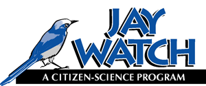 Jay Watch Annual Report 2016 -