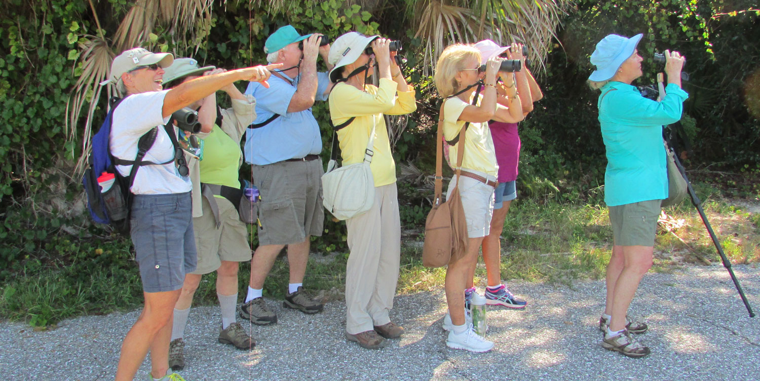 FIELD TRIPS   If you love to get outdoors and learn to identify birds, please join us on an expert-led field trip.   SEARCH OUR EVENTS CALENDAR