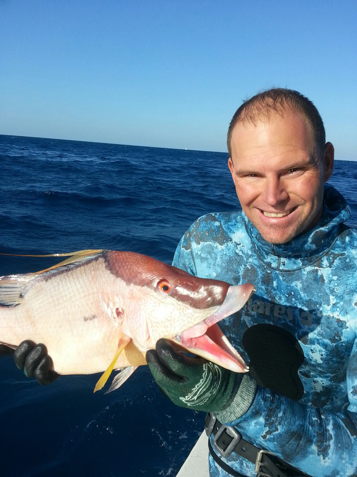 looks like it will be hogfish sandwiches on the menu!