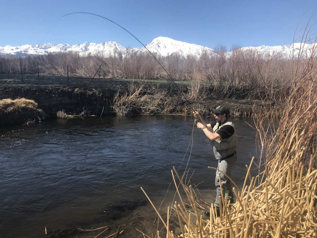 Warm days are the norm when fishing on the lower Owens River in the winter time.