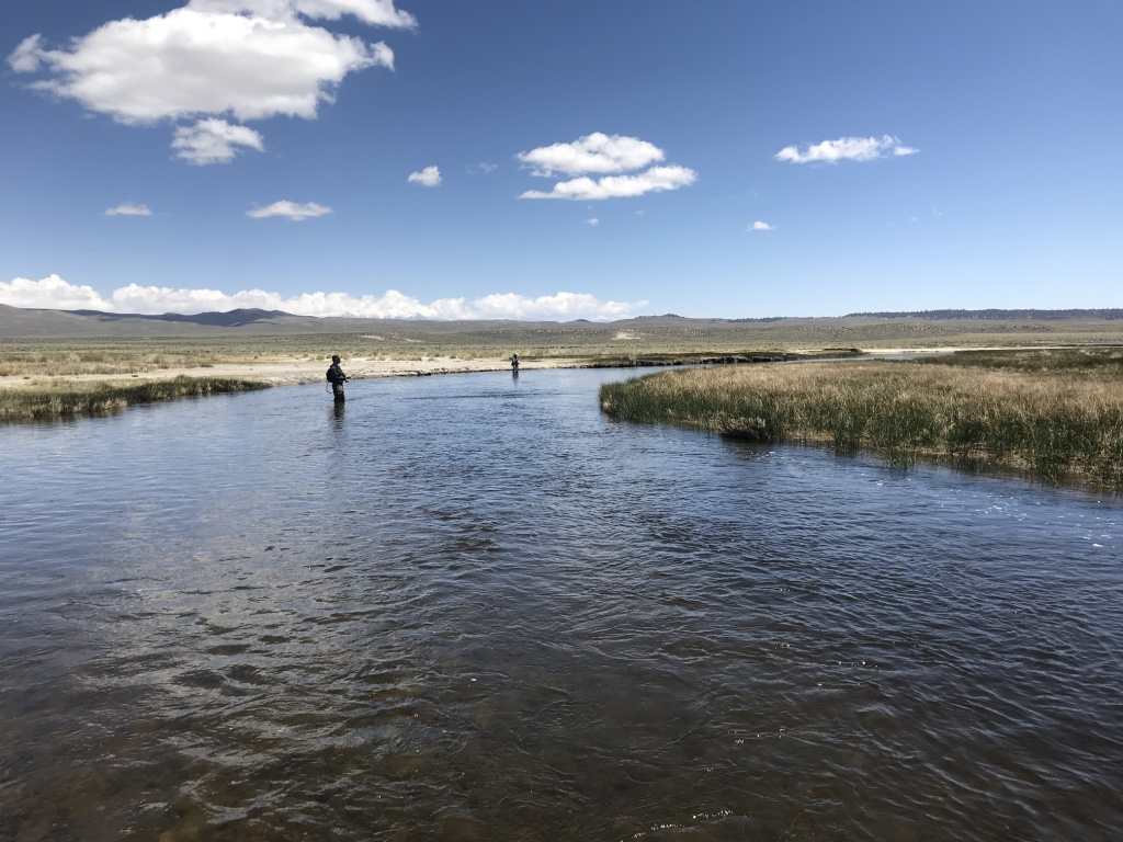 The mouth of the upper Owens River, where it enters Crowley Lake, is a great place to fish for migrating trout entering the river.