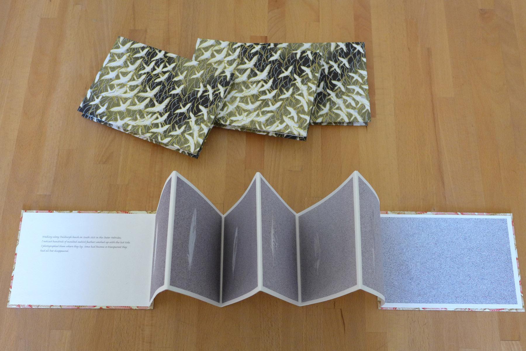 Feathers concertina books