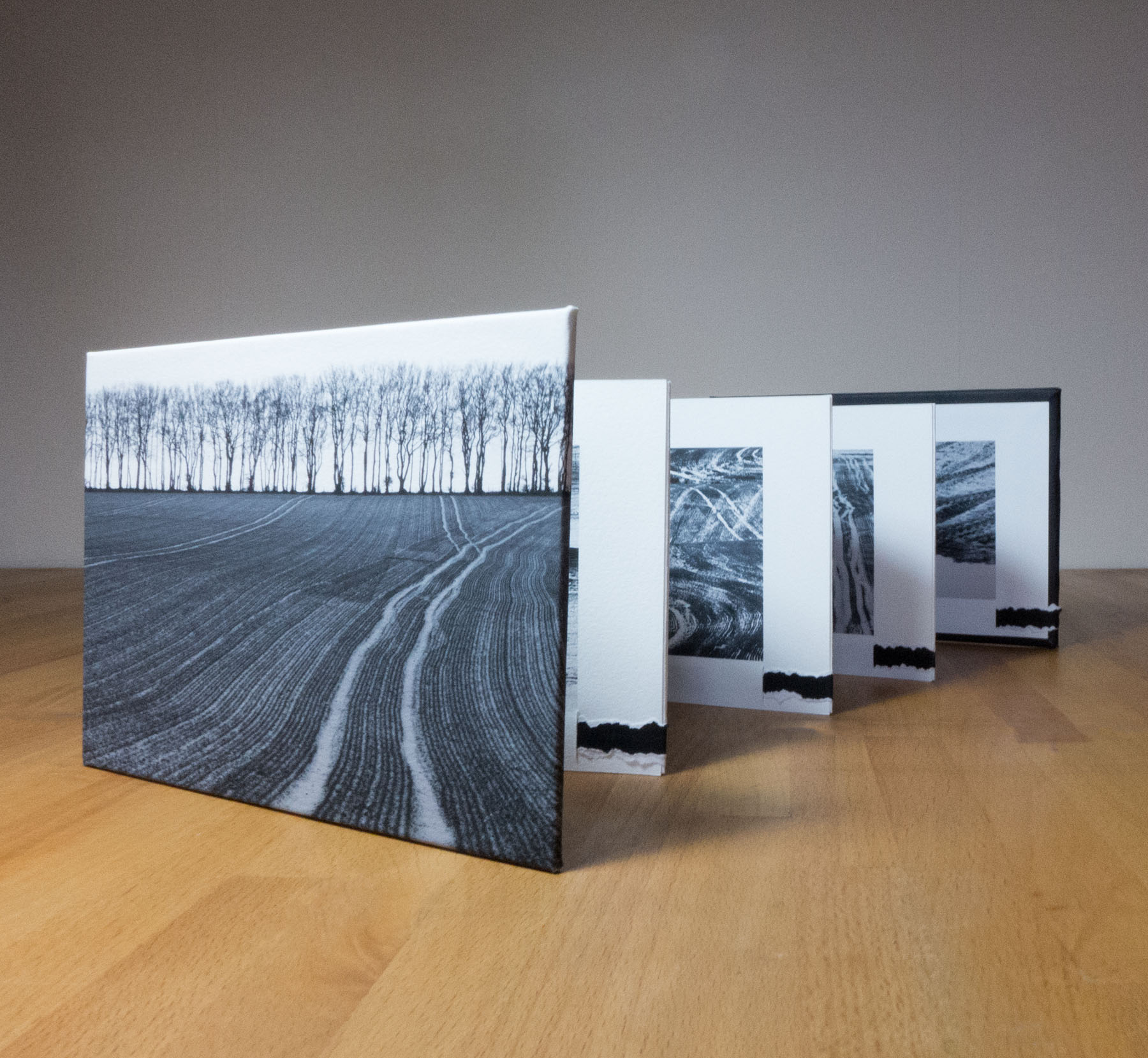 Land Lines concertina book
