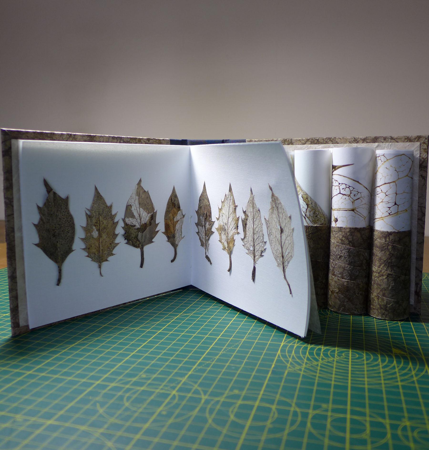 'Venation' artists' book interior