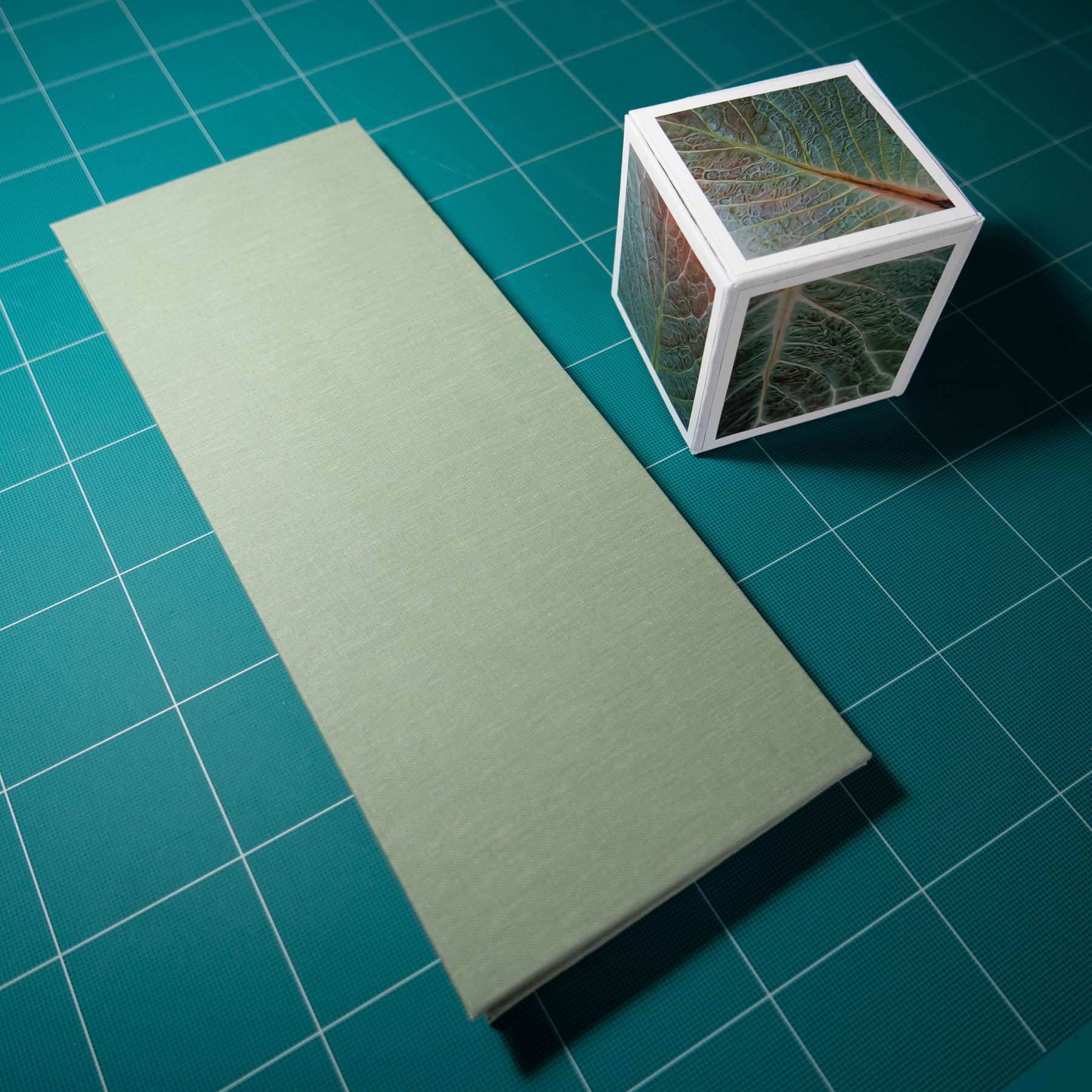 Savoy Leaves book closed and photo cube.