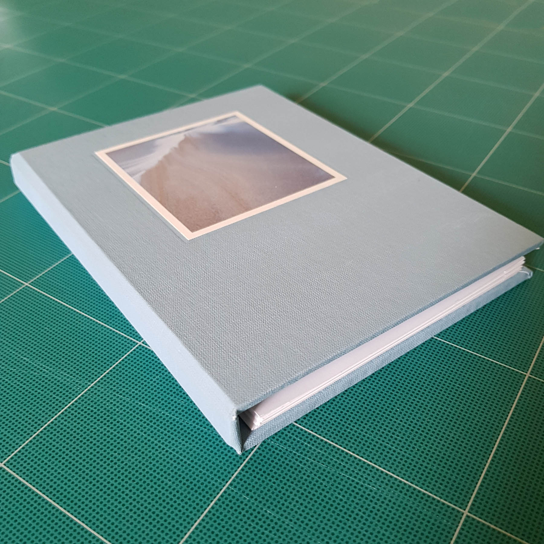 Frosted Sands book cover