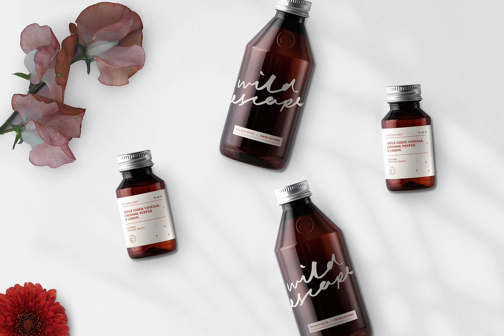 WildEscape-Bottle-Packaging-Design.jpg