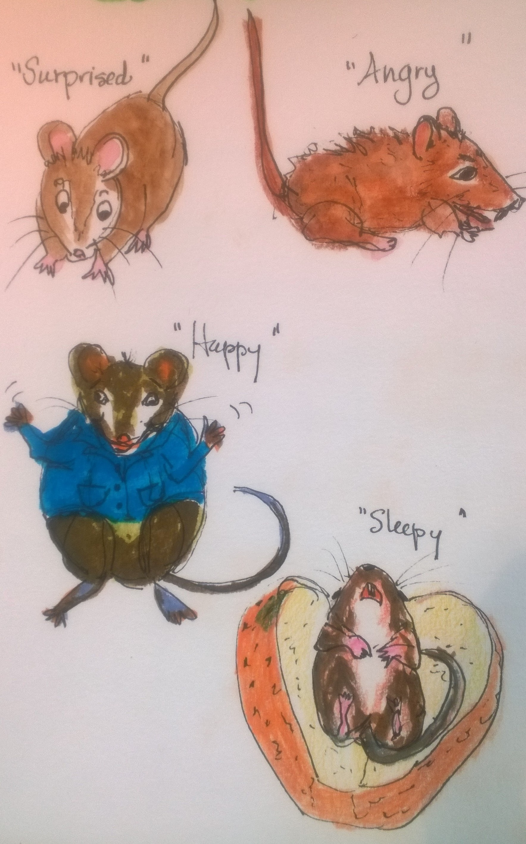 I am in between travel sketchbooks right now, so that I would share some of the playing that I have been doing this summer in the Whimsical Genre. My granddaughter is turning 3 next week. She loves hearing stories and telling stories, animals of all sorts, so I thought it would be fun to explore some illustrations of the animals we imagine in out stories. Mice are a favorite!