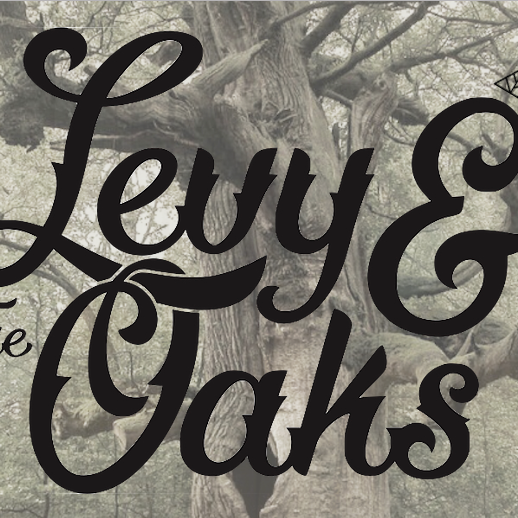 8/25 Levy & the Oaks With Brother Valiant