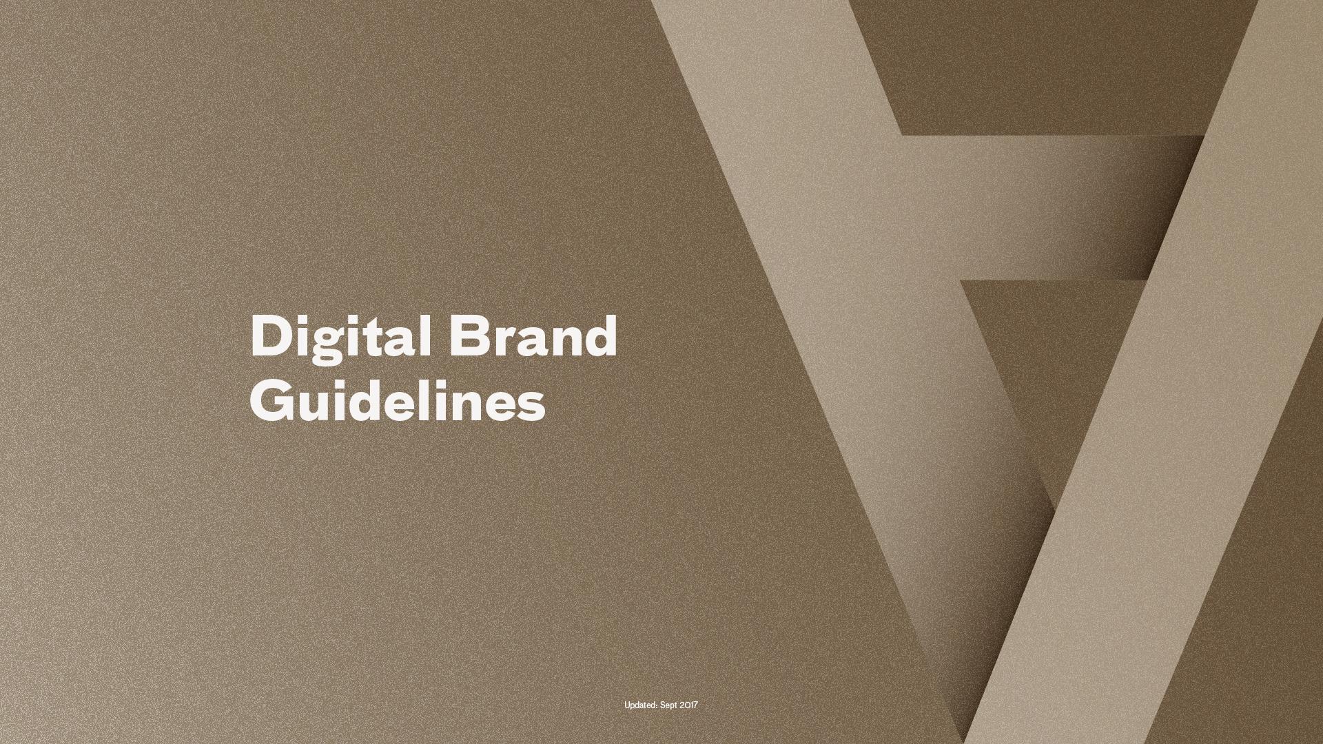 AAM-Digital Brand Guide_v1_r13.jpg