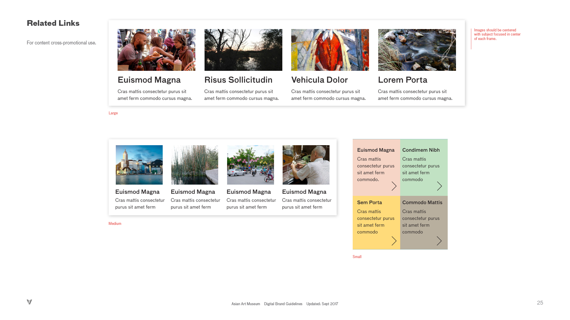 AAM-Digital Brand Guide_v1_r1325.jpg