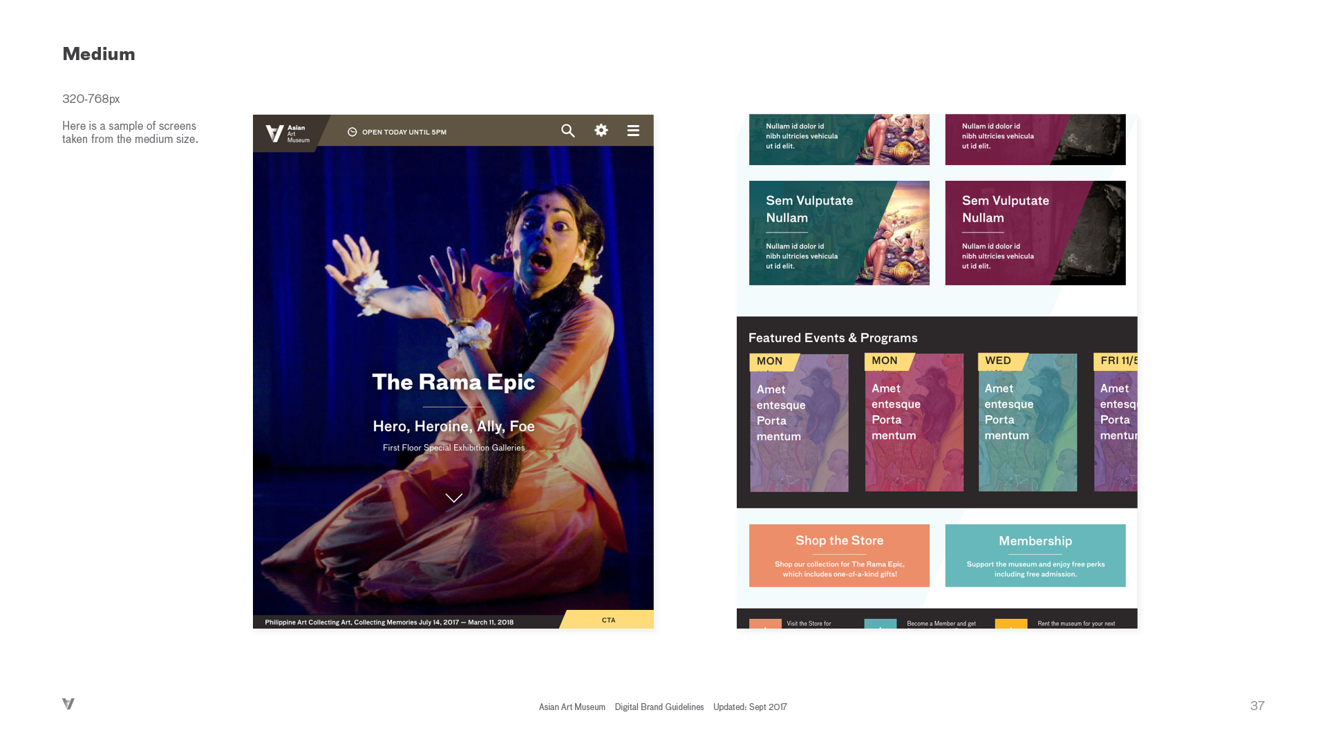 AAM-Digital Brand Guide_v1_r1337.jpg