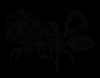 Floret & Foliage Floral Graphic 1.png