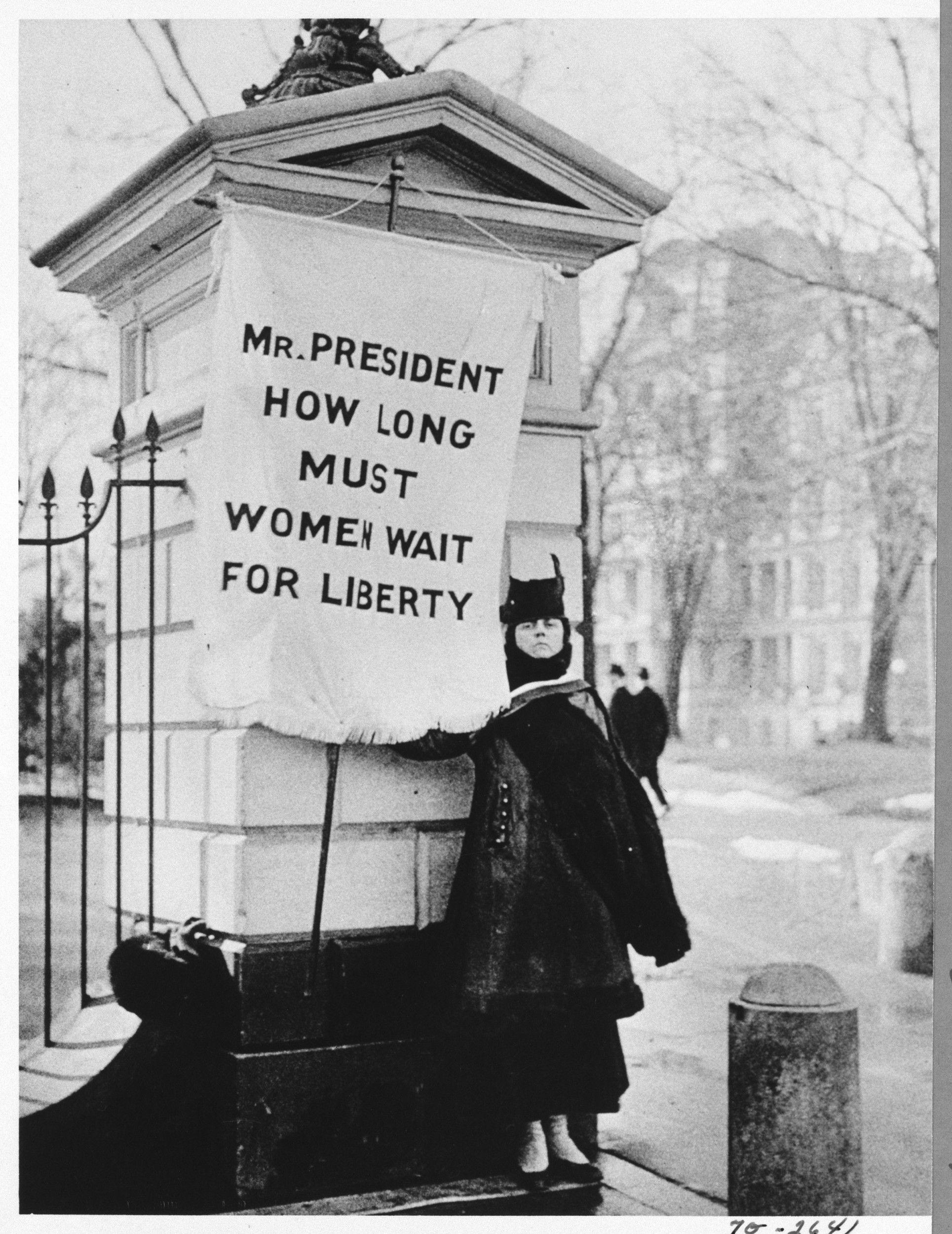 Image: Flag Bearer for Women's Rights Standing Near White House