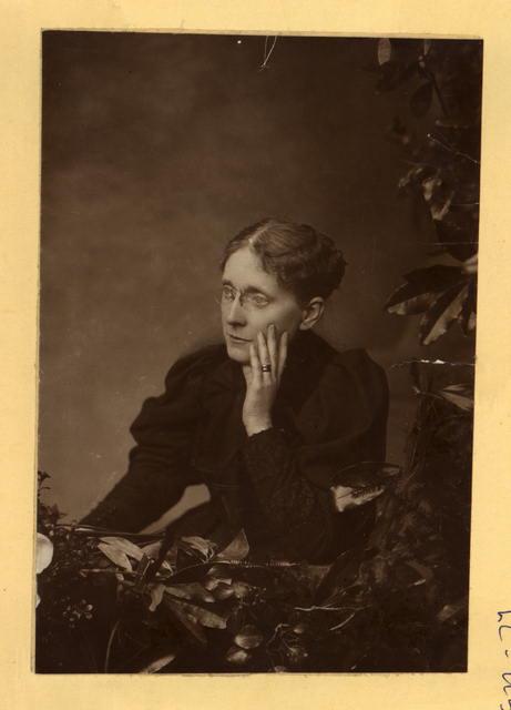 Frances Willard, half-length portrait, seated, facing left]