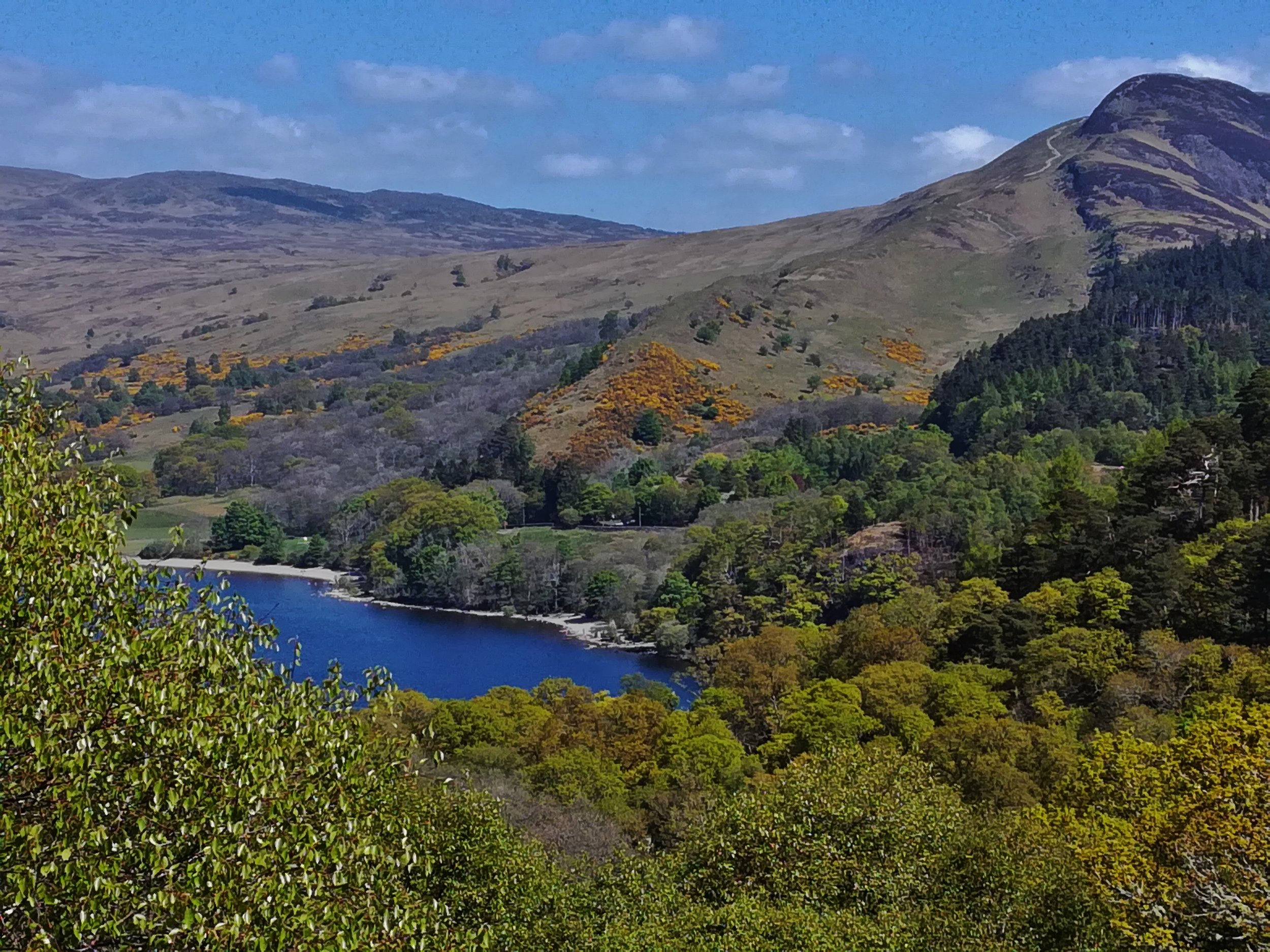 Loch Lomond Inchcaileach Island, Scotland. Day tours with walks from Glasgow, small group adventures, Roaming Scotland.JPG