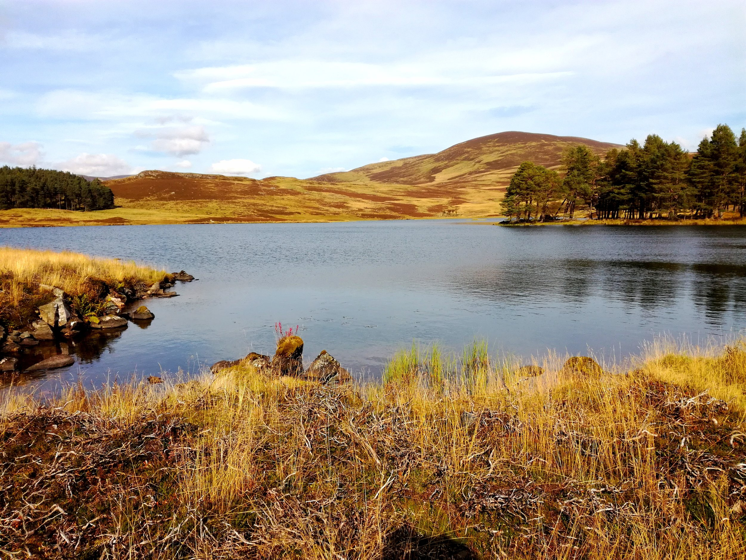Angus Glens, Scotland, Day tours with walks from Edinburgh & Stirling, small group adventures, Roaming Scotland.JPG