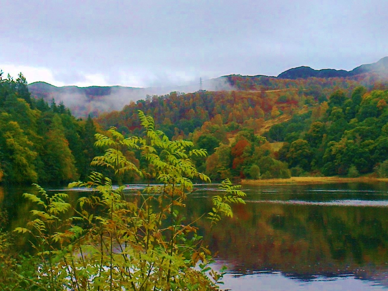 Trossachs -  Tour & Walk in small groups - Roaming Scotland..jpg