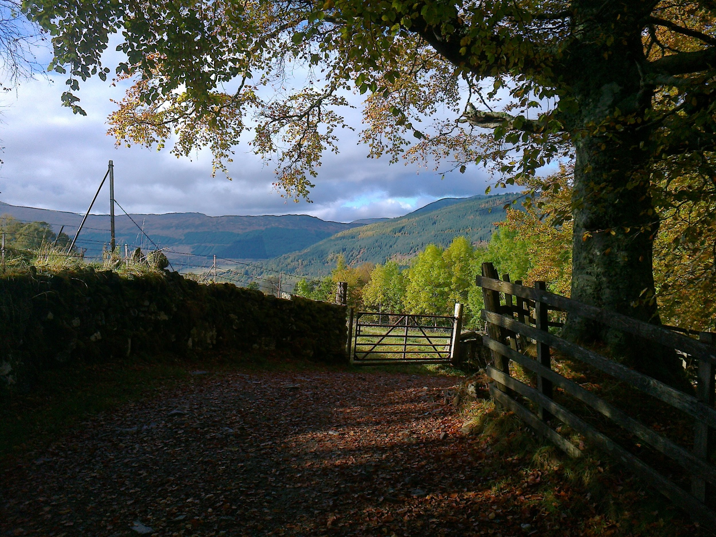 Perthshire Autumn -  Tour & Walk in small groups - Roaming Scotland..jpg