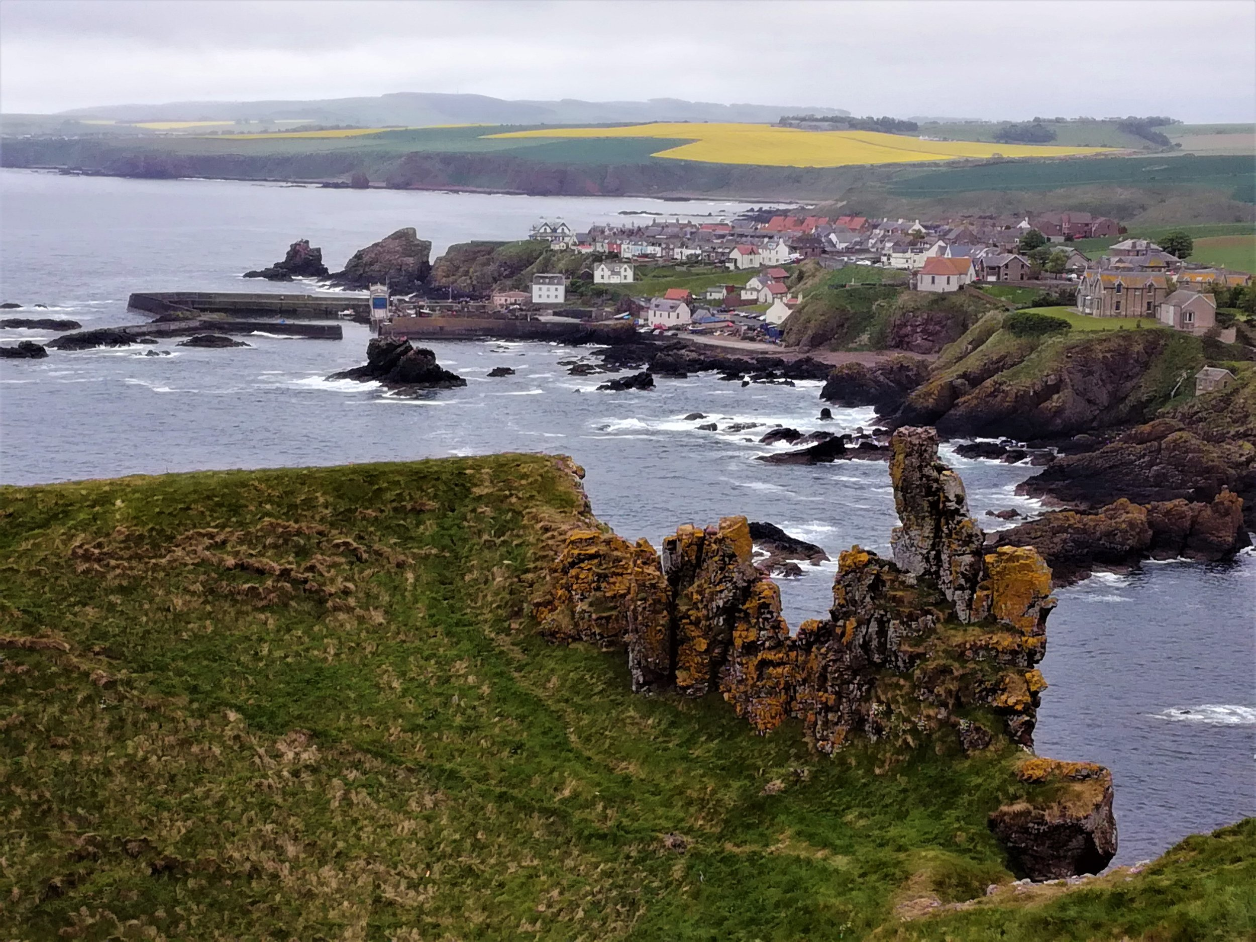 St Abb's Head, Northumbria -  Tour & Walk in small groups - Roaming Scotland.jpg