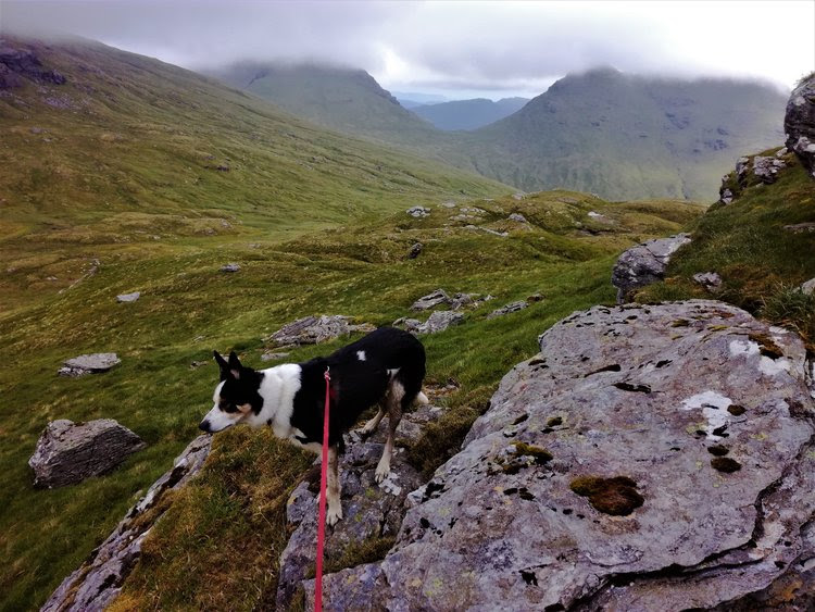 Climbing a Scottish Hill - Day tours with walks from Edinburgh,  Glasgoe & Stirling - small group adventures, Roaming Scotland..JPG