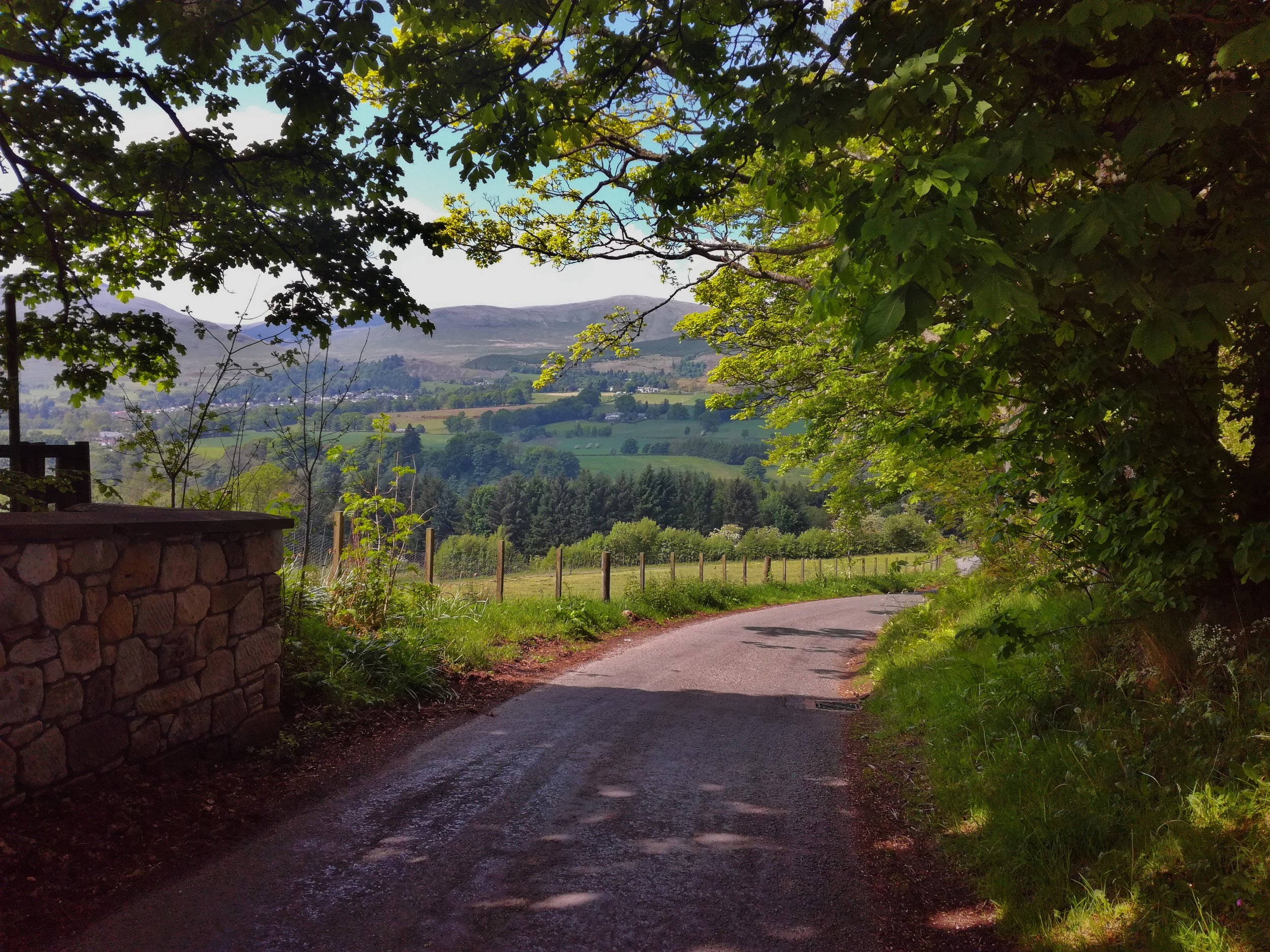 Ochill Hills, Clackmannanshire -  Tour & Walk in small groups - Roaming Scotland.jpg.jpg