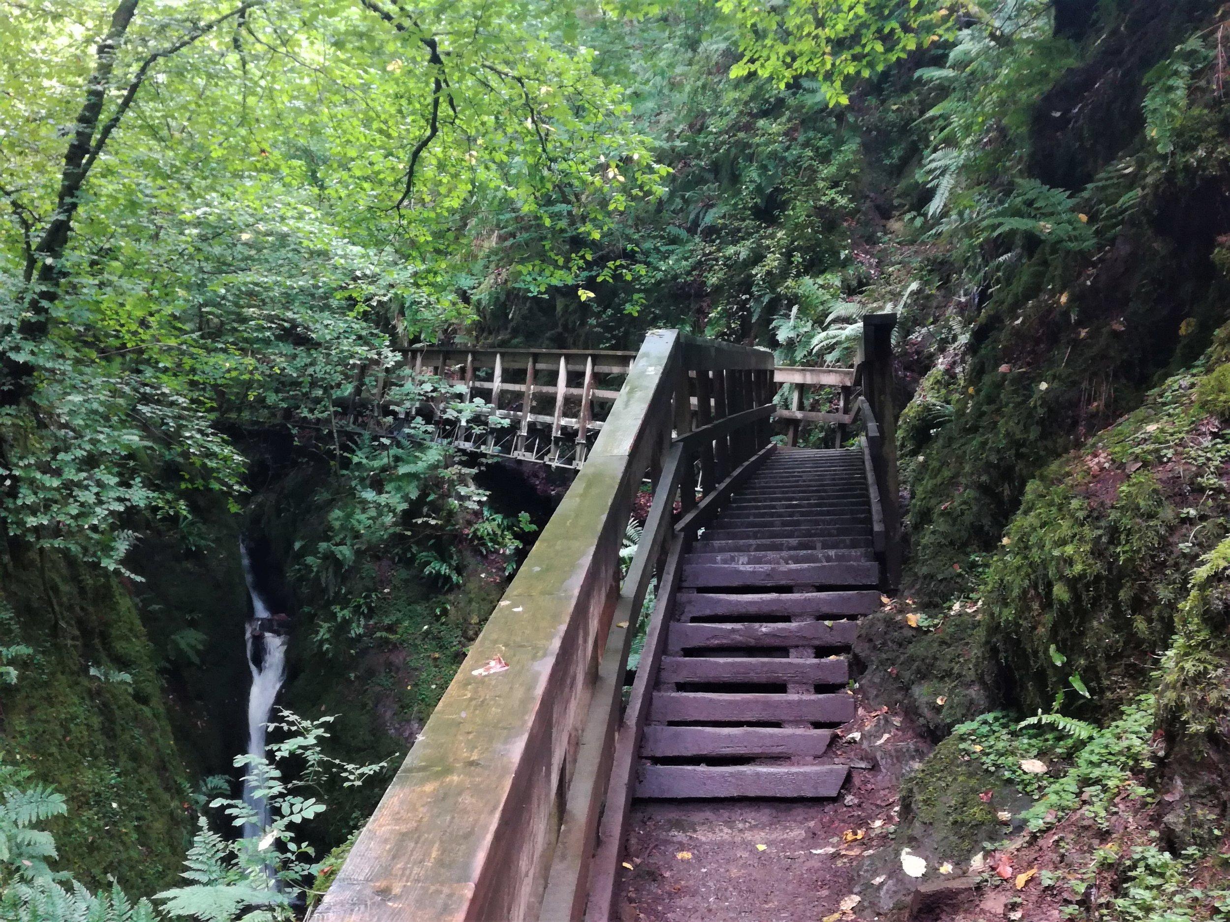 Dollar Glen, Clackmannanshire -  Tour & Walk in small groups - Roaming Scotland.jpg.jpg
