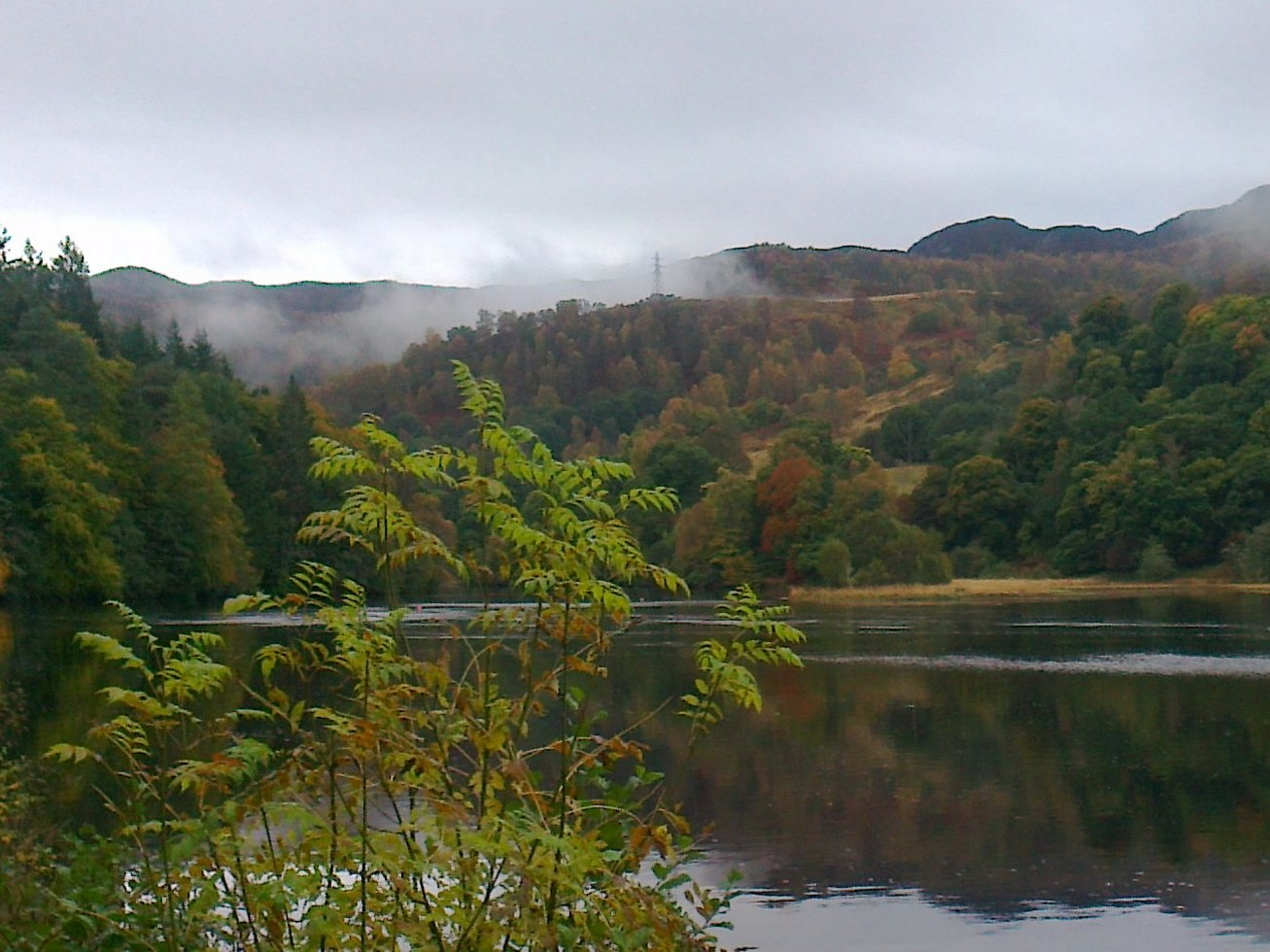 Loch Faskally, Pitlochry -  Tour & Walk in small groups - Roaming Scotland..jpg