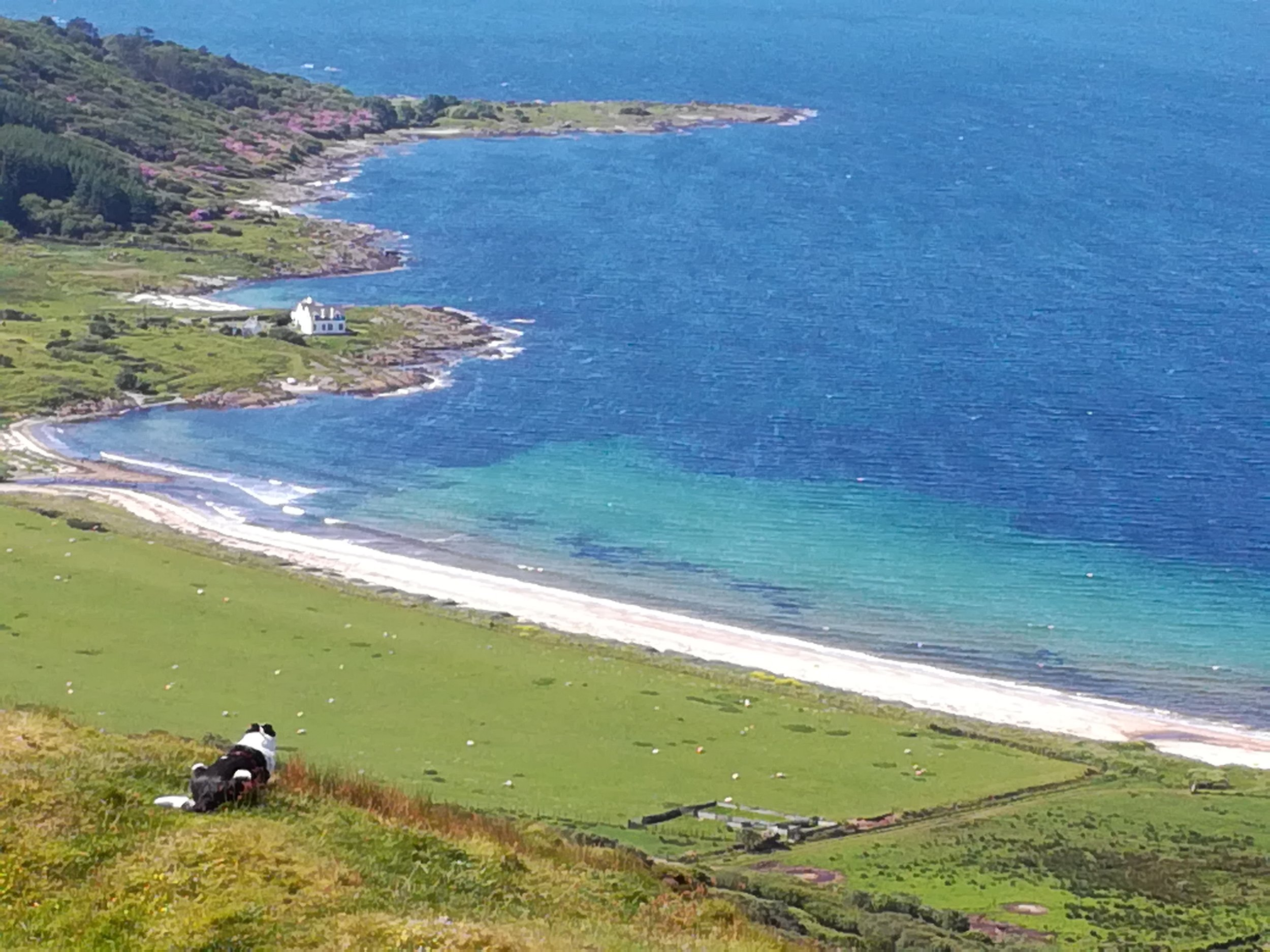 Kintyre coast -  Tour & Walk in small groups - Roaming Scotland..jpg