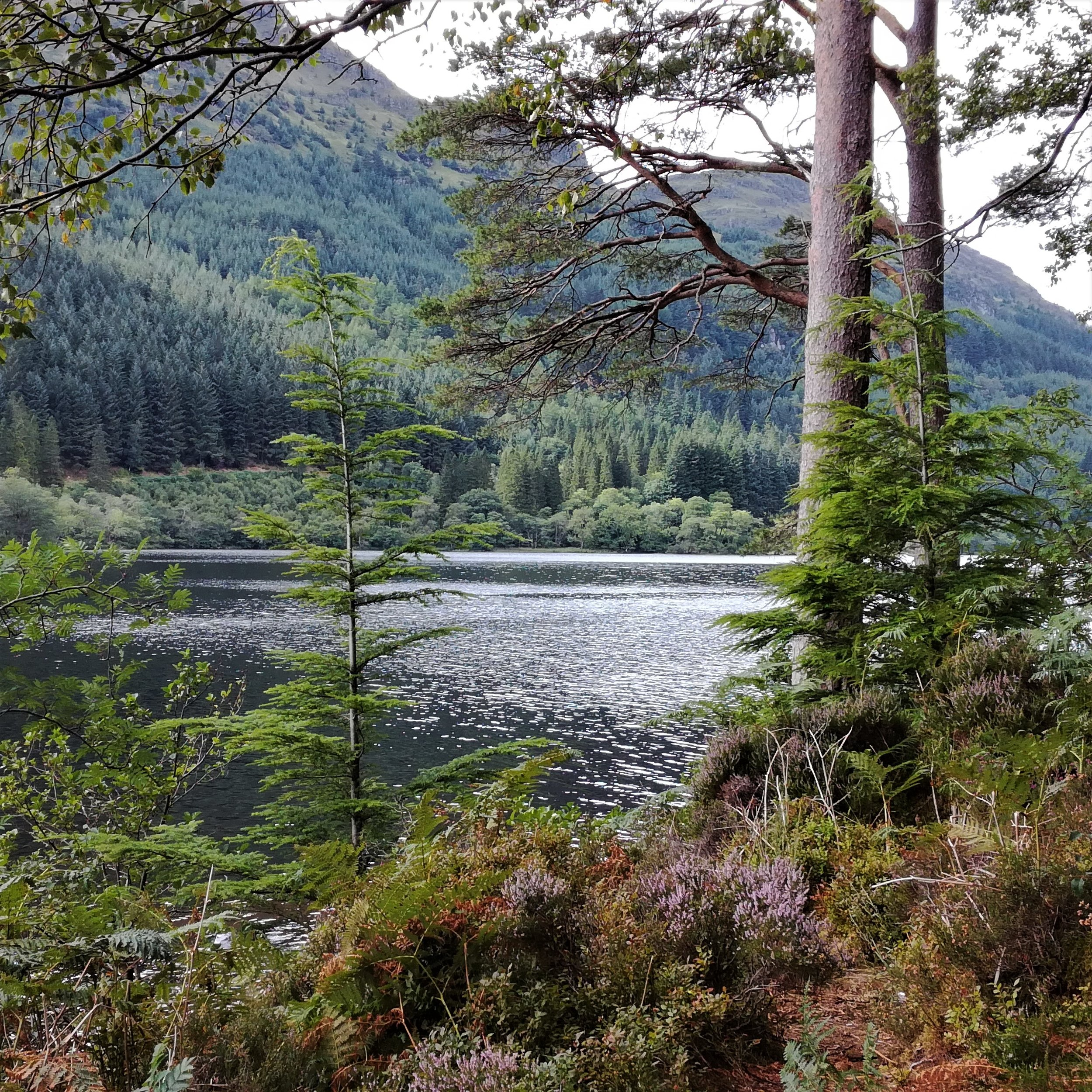 Argyll, Tour & Walk Scotland in small group adventures - Roaming Scotland.jpg
