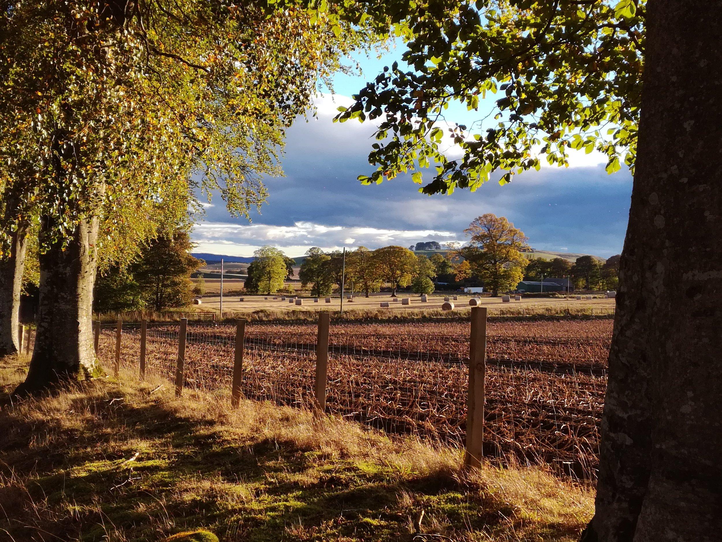 Autumn fields, Tour & Walk Scotland in small group adventures - Roaming Scotland.jpg.
