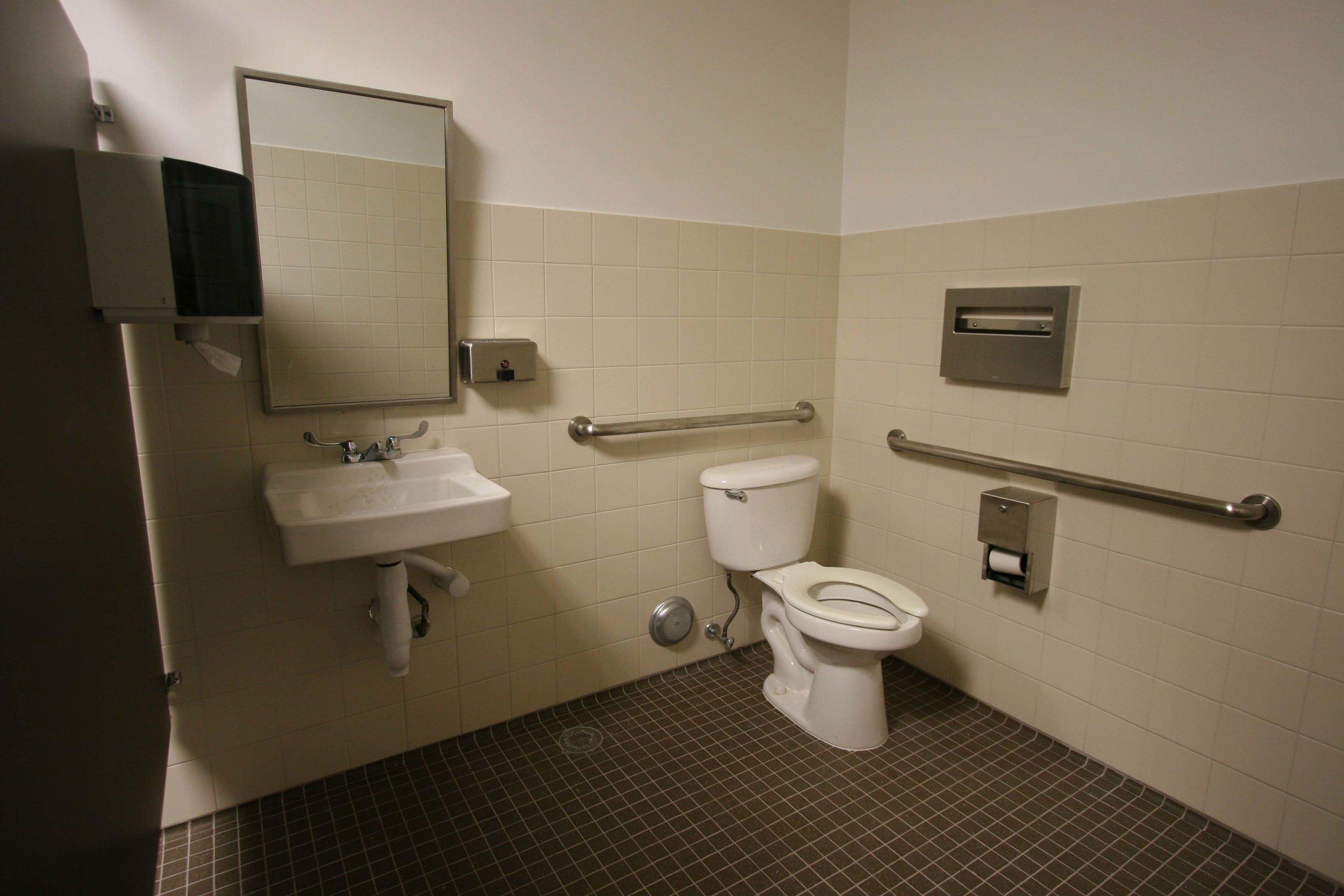 web Handicap Bathroom.jpg