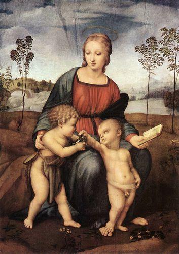 《金驰雀圣母》拉斐尔  Madonna of the Goldfinch (Madonna and Child with Saint John) Raphael