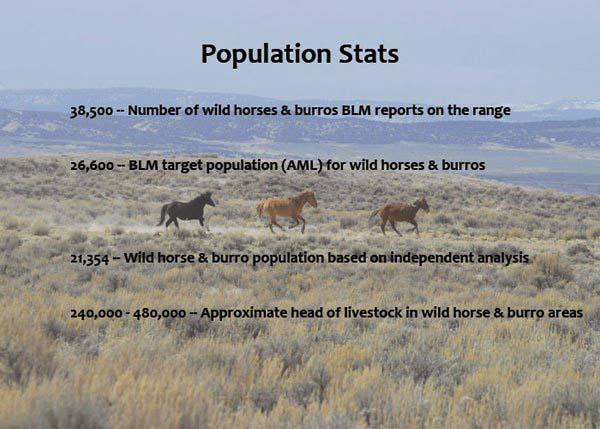 PopulationStats.jpg