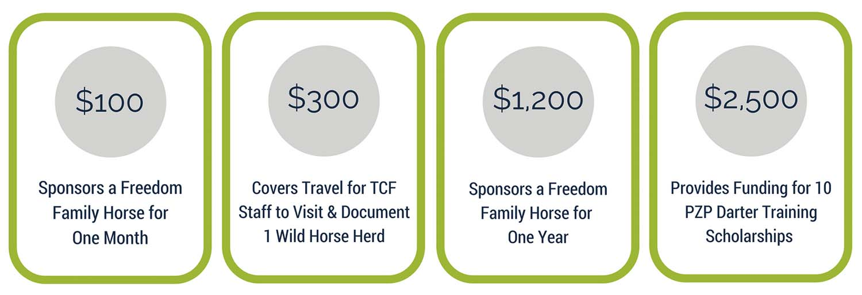 Fundraising Graphic.jpg