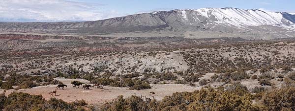 Galaxy's band moving up the mountain below the Mines hill. Electra, bottom left. Big Pryor Mtn. in the background.Bear Tooth Mountains in the distance left of frame. April, 2018
