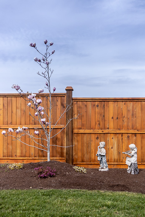 694_lowrys_road_parksville_vancouver_island_home_for_sale_magnolia.jpg