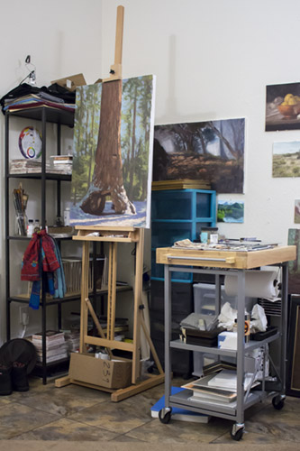 Overcoming Challenges in a Tiny Apartment Studio — Brandon