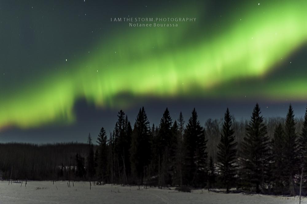 Aurora 2019-03-17-013854.jpg