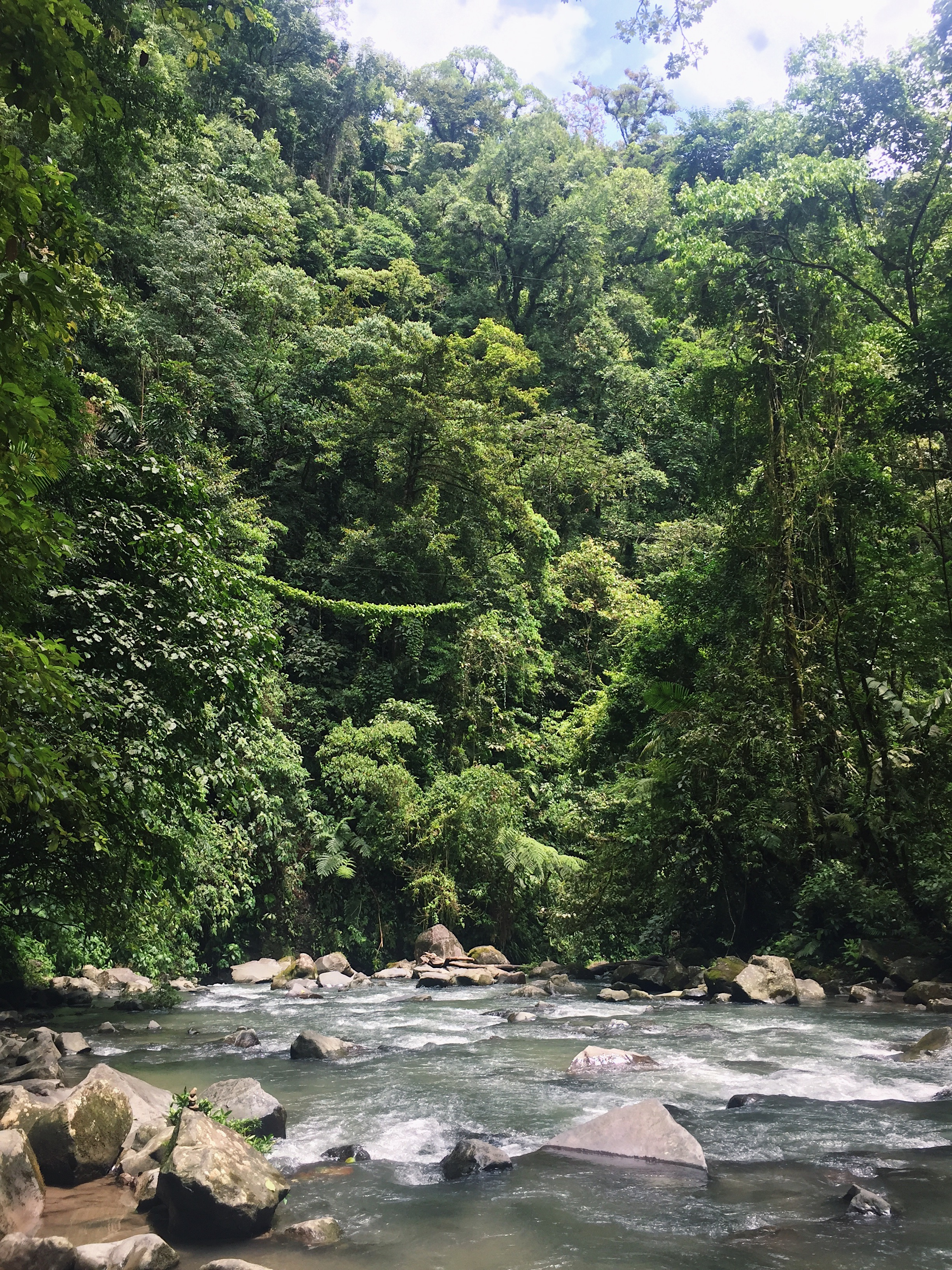 La Fortuna Waterfall, Costa Rica   Helena Alyssa