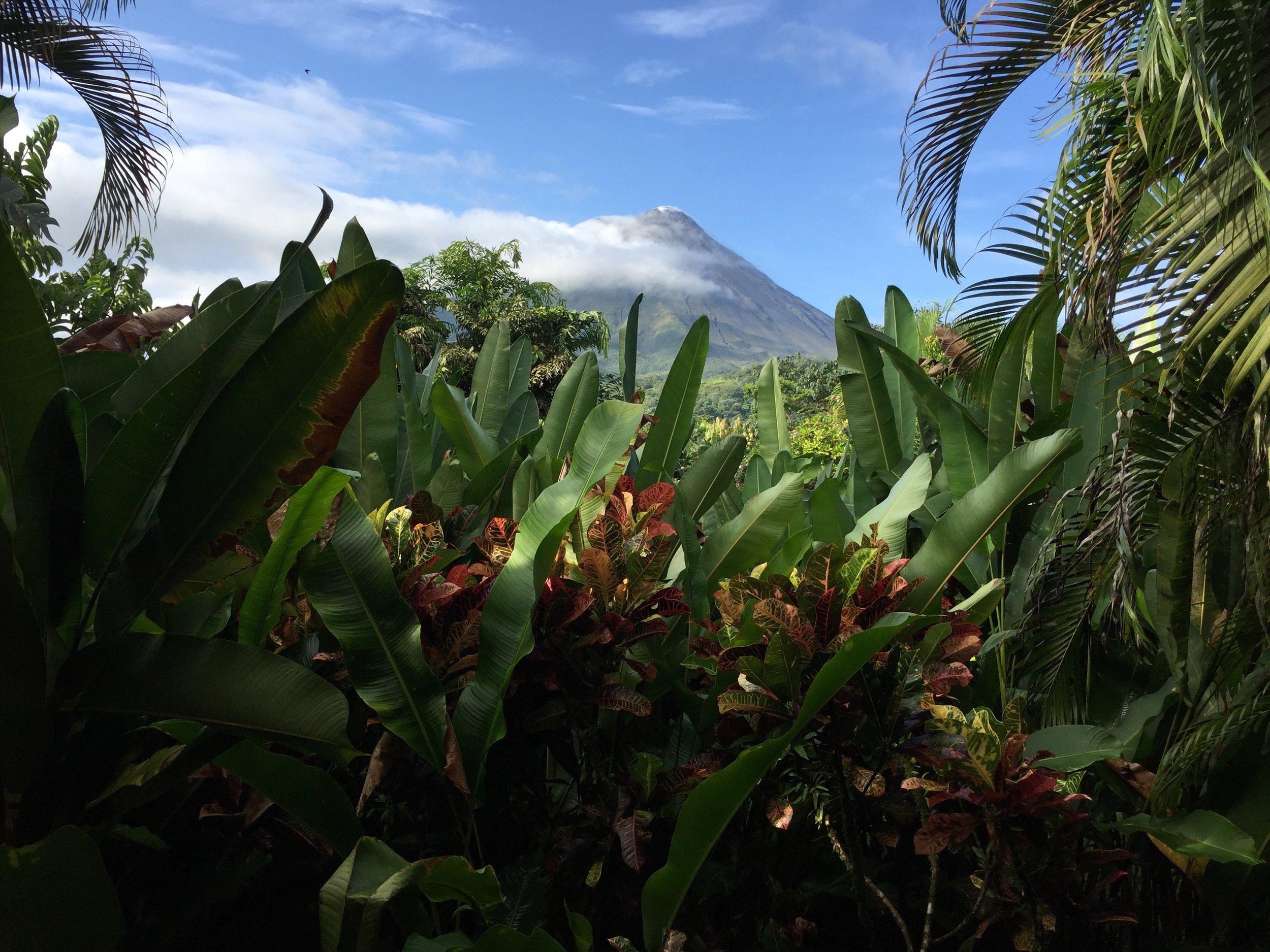 Nayara Hotel, Arenal Volcano, Costa Rica   Helena Alyssa