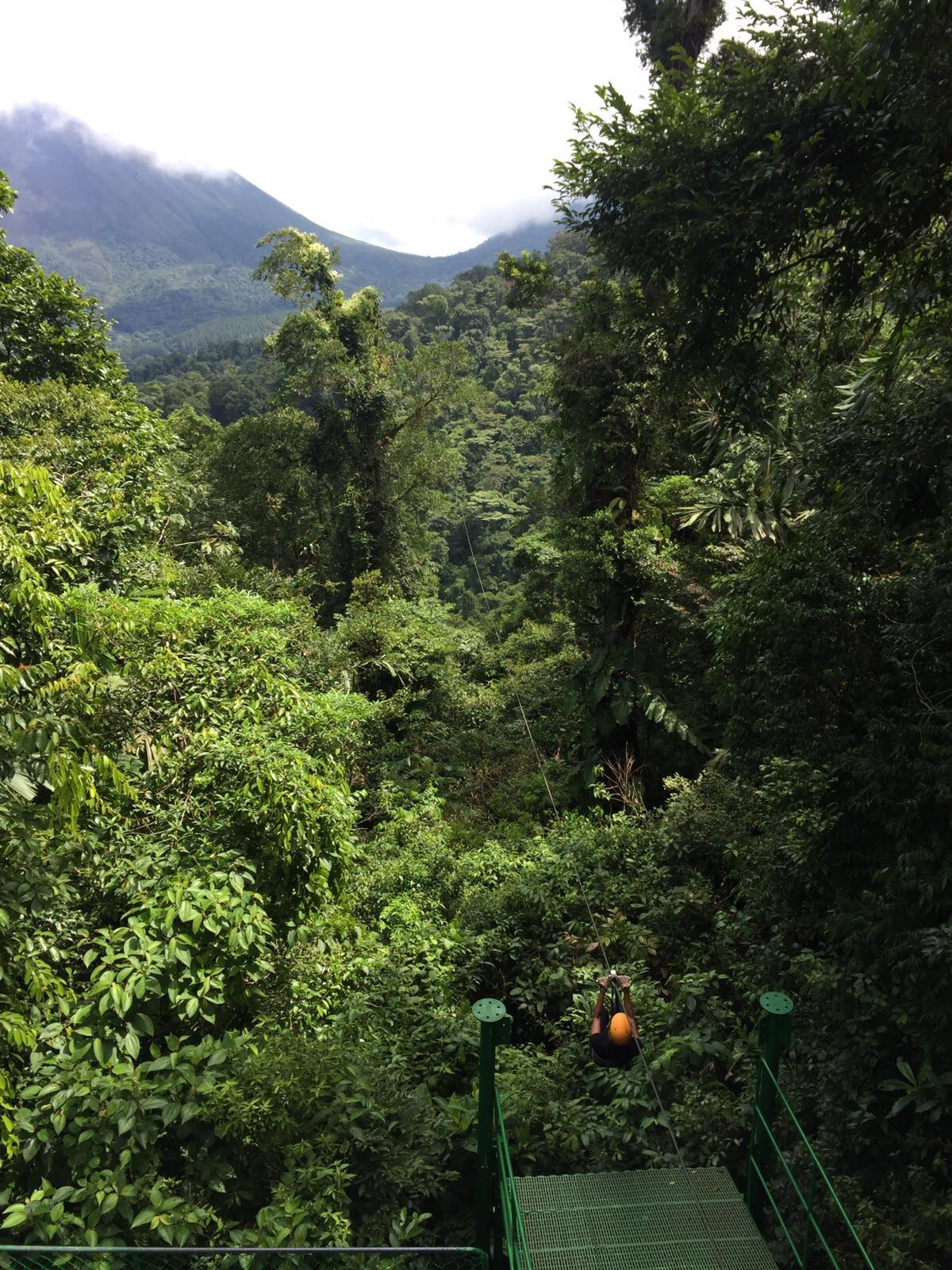 Zip lining through Costa Rican rainforest   Helena Alyssa