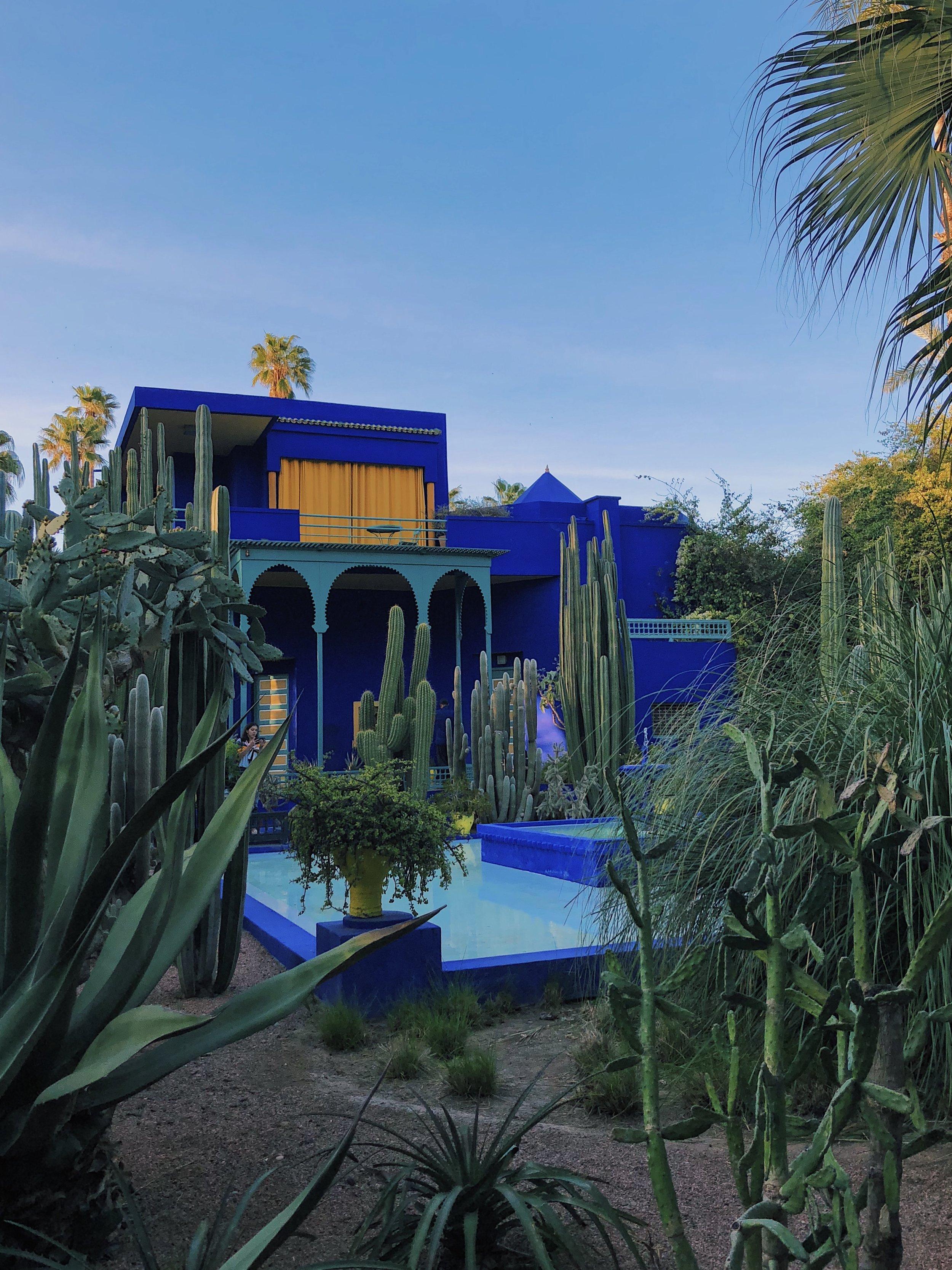 Le Jardin Majorelle | Helena Alyssa