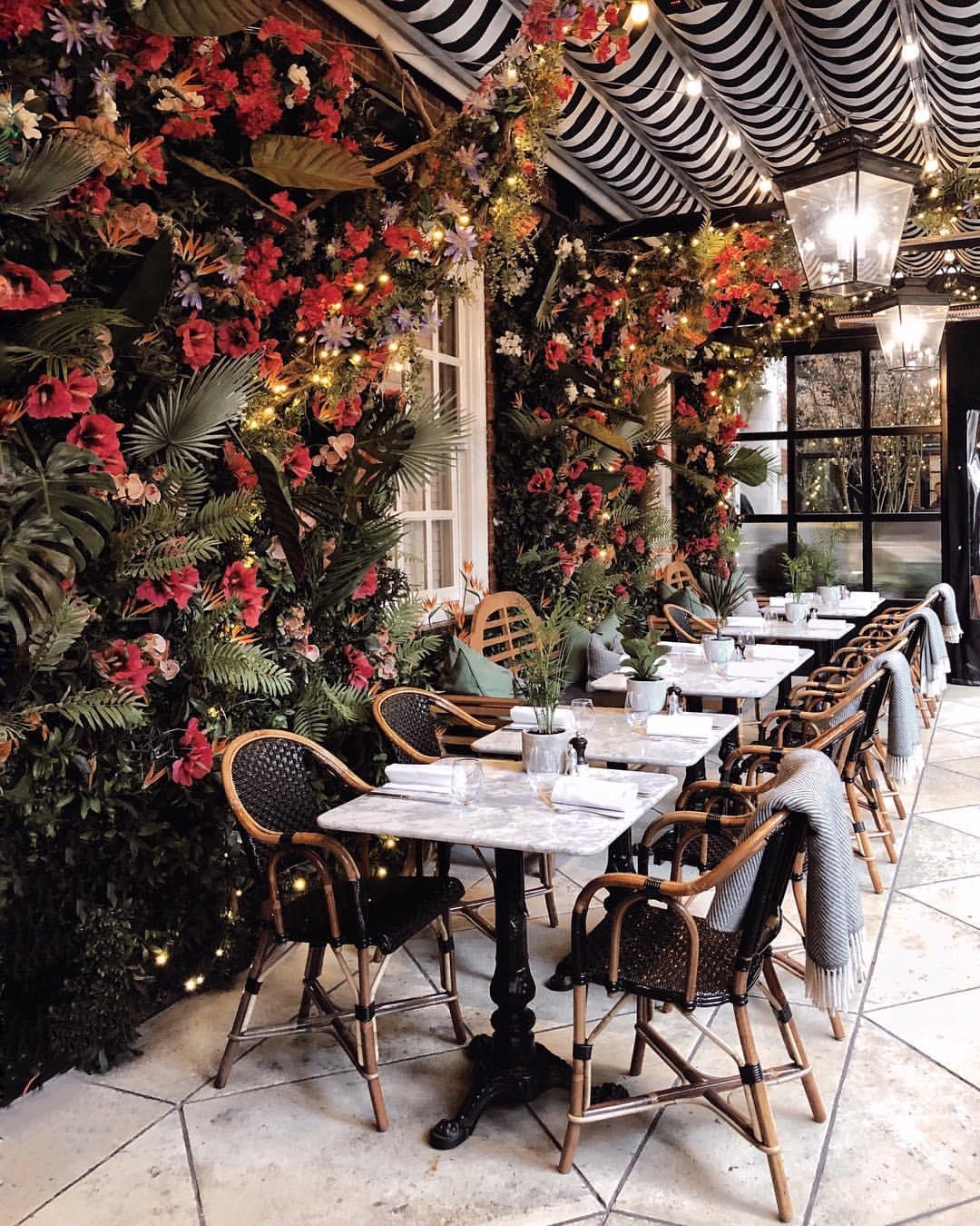 Dalloway Terrace, London, DallowaySpringJungle